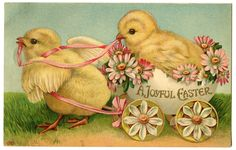 Easter Chicks : free printable images for Easter holiday DIY paper crafting.    GraphicsFairy.jpg 1,600×1,017 pixels