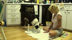 Watch Dali's new trick and her huge blooper