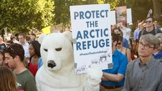 Californië sluit eigen klimaatakkoord | VTM NIEUWS