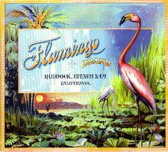 Los Angeles Flamingo Bird Orange Citrus Fruit Crate Label Vintage Art Print #Flamingo