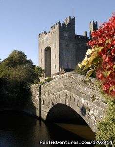 Bunratty Castle & Folk Park is Ireland's top visitor attraction offering a magnificent 15th century Castle and 19th century Folk museum. Entertainment is held nightly at Bunratty Medieval Banquet and Traditional Irish Night.