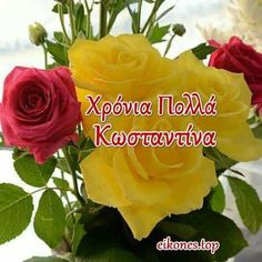 Name Day, Names, Rose, Amazing, Flowers, Plants, Pink, Saint Name Day, Plant