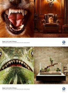 Volkswagen: Dog Danger is just a matter of distance. ACC System. Keeps you at a safe distance from the vehicle ahead. Advertising Agency: AlmapBBDO, São Paulo, Brazil #ads #Volkswagen