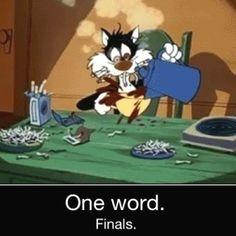 Describes finals week perfect!