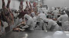 Gracias Sra PresidentA !Argentina cae al 10º puesto como exportador de carne