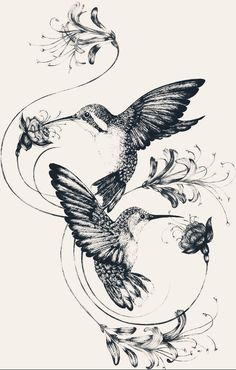 Hummingbirds & Honeysuckle Fine Art Print by Emily Carter Emily Carter - Humm. - Hummingbirds & Honeysuckle Fine Art Print by Emily Carter Emily Carter – Hummingbirds & Honeys - Future Tattoos, New Tattoos, Body Art Tattoos, Sleeve Tattoos, Tatoos, Temporary Tattoos, Bird Drawings, Tattoo Drawings, Artwork Drawings