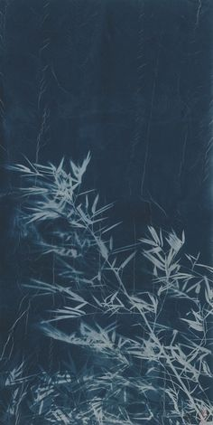 ZHANG DALI 張大力 Bamboo No.3, 2013 Cyanotype photogram on rice paper 53 1/10 × 26 7/10 in 135 × 67.7 cm