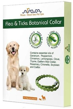 Arava Flea & Tick Prevention Collar – for Dogs & Puppies – – 11 Natural Active Ingredients – Safe for Babies & Pets – Safely Repels Pests – Enhanced Control & Defense – 5 Months Protection. Little Puppies, Dogs And Puppies, Dog Words, Outside Dogs, Insect Species, Pet Spa, Tick Control, Flea Treatment, Animal Habitats