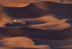 __waves of sands__ by Omar Alkendi - Photo 133444123 - 500px