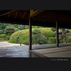 https://flic.kr/p/HnRSjb | 慈光院 | Nara Jiko-in temple , JAPAN う〜ん、来年こそはこの刈り込みに花がある時に、、、