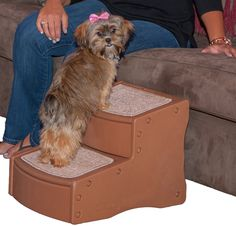 cat Gear Easy Step II cat Stairs, 2-step/for Cats and Dogs up to 75-pounds ** To view further, visit now (This is an amazon affiliate link. I may earn commission from it)
