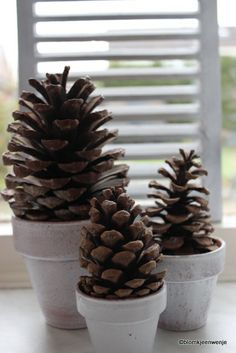 november 001 Christmas Time, Christmas Crafts, Xmas, Pine Cone Decorations, Christmas Decorations, Domestic Goddess, Natural Forms, Along The Way, Pine Cones