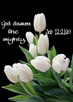 """It's not by might, nor by power, but when God is wanting, he will """"disarm the mighty"""" and give favor to who He chooses.  It is a blessing to have favor from the Lord.  (H.R.)  Job 12: 21(b)"""