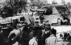 «ЯГДТИГР» / «ЯгдТИГР» и другие истребители танков