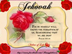 Jehovah knows we are not perfect