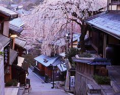 Spring morning in Kyoto, Japan: photo by Kiyo Photography, via Flickr