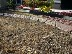Decorative concrete curbing in Fort Myers FL - Sweeping Curves