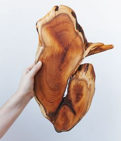I love wood, this is amazing!  Makes me wish I could run my hands over it