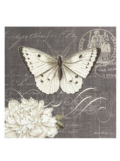 """Kathryn White Butterfly Blossom No. 3 Hand-Embellished Canvas, 20"""" x 20"""" at MYHABIT"""