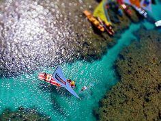 Porto de Galinhas - Nadando em águas cristalinas (falso Tilt-Shift) - Ricardo Mendonça Ferreira