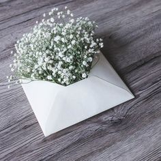 Browse our unique collection of Birthday wishes. Find the best Happy birthday card messages. Flower Bouqet, My Flower, Flower Art, Flower Background Wallpaper, Flower Backgrounds, Good Morning Flowers, Beautiful Morning, Nature Photography Flowers, Babys Breath Flowers