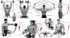The 9 Best Shoulder Exercises of All Time - do this workout for 12 weeks and your shoulders will grow huge! These are the best 9 exercises!