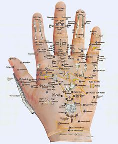 The palm controls the body.