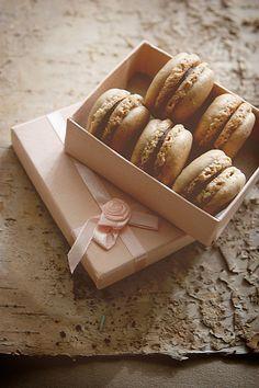 榛子巧克力马卡龙