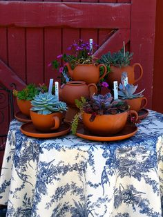 Cambria Pines Nursery is full of wonderful plants and garden whimsies such as this planted tea set. Garden Gates, Photo Colour, Container Gardening, Tea Time, Planter Pots, Sweet Home, Nursery, Flowers, Plants
