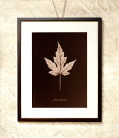 Wall Decor Brown Acer Leaf  7x9'' Toned by RetroPhotographyArt