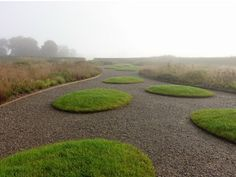 Piet Oudolf, Public Garden, Hauser & Wirth, Somerset. Located at Durslade Farm on the edge of the ancient town of Bruton in the southwest of England. _/\/\/\/\/\_