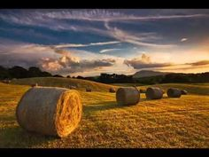 Round hay bales on a farm Champs, Hay Bales, Straw Bales, Fields Of Gold, Butterworth, Field Of Dreams, Farm Photo, Felder, Nature Pictures