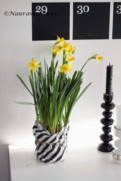 Kev�tkukkia modernimpaan tyyliin Glass Vase, Easter, Decoration, Spring, Plants, Home Decor, Decor, Decoration Home, Room Decor