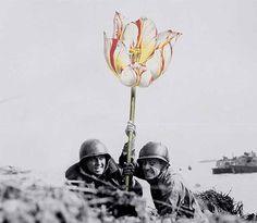Artista substitui armas por flores em fotos históricas | Catraca Livre