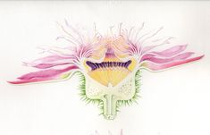 lucy smith botanical artist - Google Search Planting Flowers, Flowering Plants, Kew Gardens, Glass House, Water Lilies, Local Artists, Botanical Art, How To Introduce Yourself, Embroidery