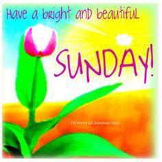 Happy Sunday!!