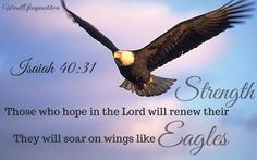 Scripture Quotes, Scriptures, Mission Images, Quick View Bible, Book Of Isaiah, Eagle Painting, Good Prayers, Bible Verses About Strength, Isaiah 40 31