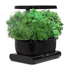 Indoor Gardening ist der neue Trend im Gardening. Sparsame LED Lampen ermöglichen ganzjährig knackige Salate oder Kräuter von der Fensterbank.