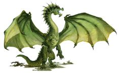 Young Green Dragon » Dungeons & Dragons - D&D 5
