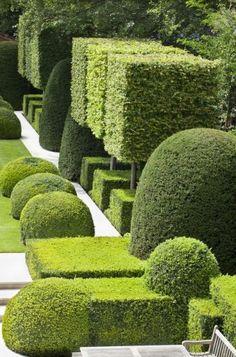 Images of topiary - del Buono Gazerwitz Landscape Architecture Boxwood Garden, Garden Hedges, Topiary Garden, Formal Gardens, Small Gardens, Outdoor Gardens, Modern Landscaping, Garden Landscaping, Beautiful Landscapes