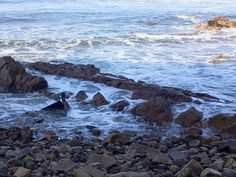 Shipwreck Hiking Trail, Palos Verdes
