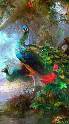 A fade painting of a tremendous huge intensiveness of a real colours of a Peacock....just fade.