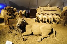 bull race, Madrid, Spain, a famous sport in Spain but this time was by sand, it's amazing also real, are you agree? for more top images, like and visit our page to get updates: http://pinterest.com/travelfoxcom/pins/