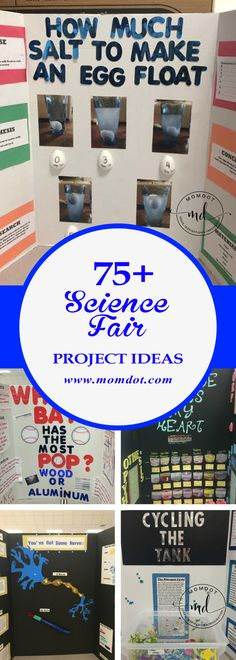 Adrian's Science Fair Project 4th Grade | Easy science ...  |4th Grade Science School Projects