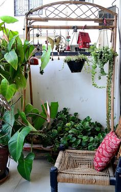 10 houseplants that actually clean the air you breathe a for Balcony decoration ideas india