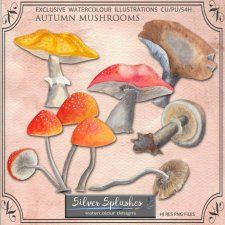 EXCLUSIVE Autumn Mushrooms Watercolour by Silver Splashes #CUdigitals cudigitals.com cu commercial digital scrap #digiscrap scrapbook graphics