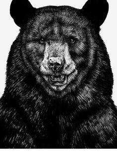 Beautiful black bear illustration by Sebastian Gomez de la Torre. by hazel Urban Outfitters, Art D'ours, White Art, Black And White, Bear Illustration, Nature Posters, Bear Print, Print Print, Love Bear