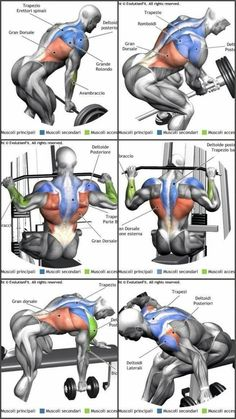 Upper-back weight exercises Upper-back weight exercises Back and Shoulder Workout Beast Mode Back Weight Exercises, Lower Back Exercises, Abdominal Exercises, Stomach Exercises, Stretching Exercises, Gym Workout Tips, Weight Training Workouts, Biceps Workout, Workout Fitness