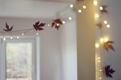 We can collect some leaves do this with some of your lights.