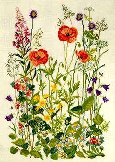 Gallery.ru / Фото #14 - Полевые цветы: 2 схемы - frango
